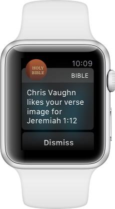 Библия Apple Watch Скачать Бесплатно