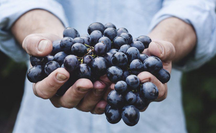 Как принести Господу большой урожай