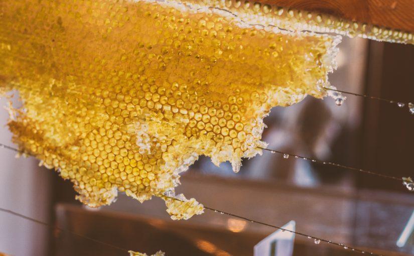 Мед из скалы. Псалом 80:17